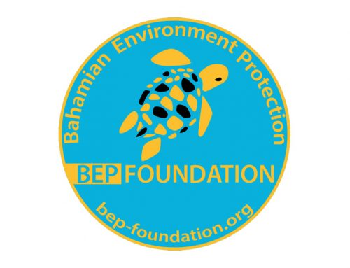BEP-Foundation's stickers