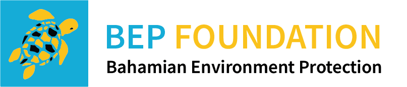 BEP Foundation Logo