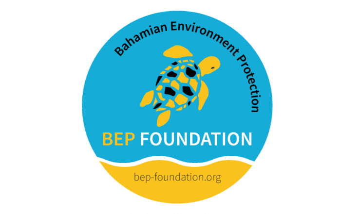 logo bep foundation