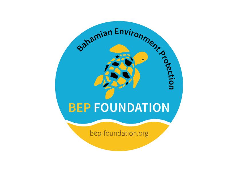 logo bep foundation